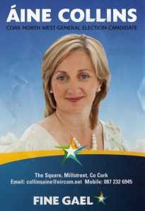 Aine Collins, Fine Gael