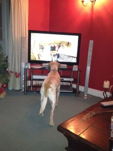 Bing watching telly