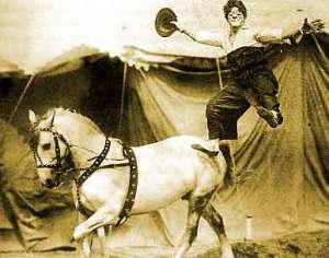 Circus Trick - Fuzion PR
