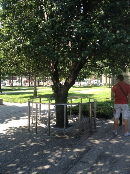 Survivor Tree, 911 memorial