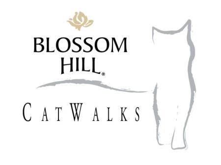 Blossom Hill Catwalks